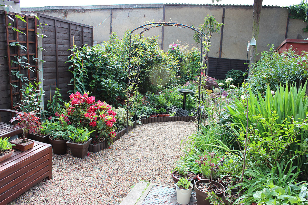 graphicality uk my garden in june