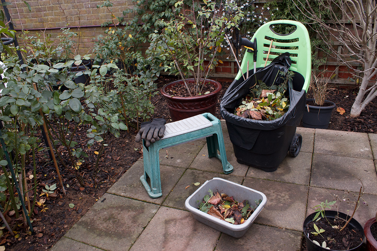 Back garden july 12th 7 aberdeen gardening - The Last Couple Of Weeks I Have Mainly Been Sitting On My Gardening Stool Picking Up Leaves From The Flower Beds This Large Gardening Caddy Is The Best
